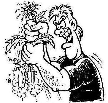 What Is Cricut Weeding?