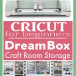 DreamBox Craft Table Storage | Craft Room Storage
